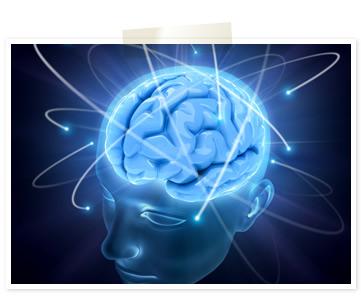 最新の脳科学に基づく英語脳プロ...